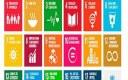 CNM dá início a série para informar sobre a Agenda 2030 para o Desenvolvimento Sustentável.