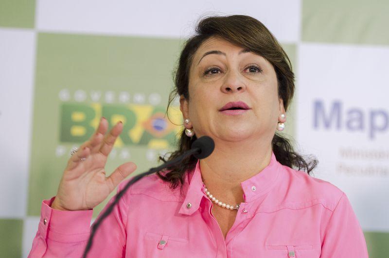 PMDB quer expulsar Marcelo Castro e Kátia Abreu do partido.